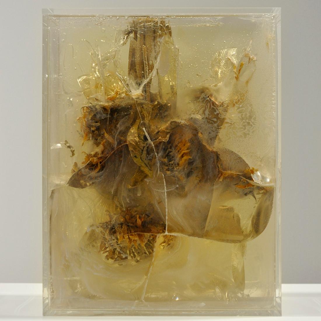 MADNESS Auringonkukat, pigmentti, akrylihartsi, akrylilasi Sunflowers, pigment, clear cast resin, plexi glass 31 x 24 x 10cm 2016