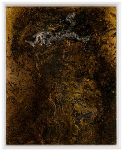 BAROQUE (1) Messinki, kuolleen eläimen jäänteet, akrylihartsi, akrylilasi Brass, original substances of a dead animal, resin, plexi glass 26 x 21cm 2016