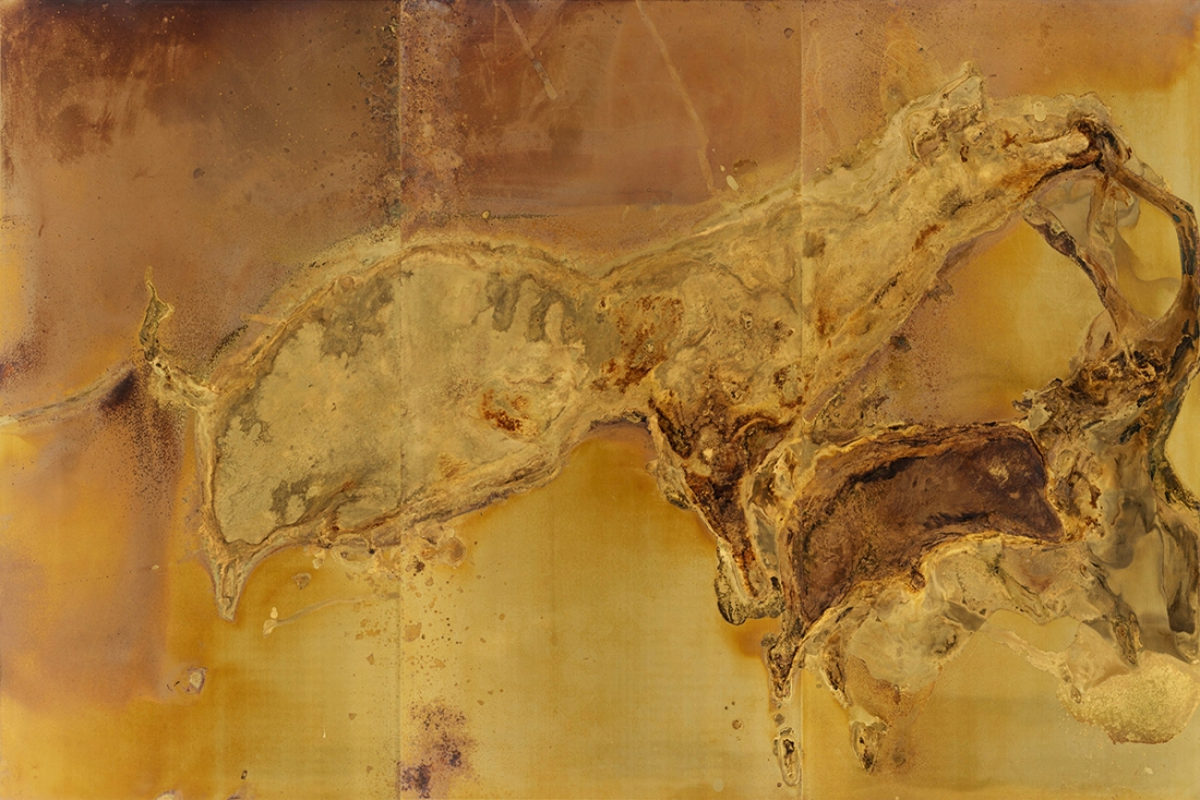 GIVING BIRTH AND DYING STILL Messinki, kuolleiden eläinten jäänteet Brass, original substances of dead animals 200 x 300cm 2016