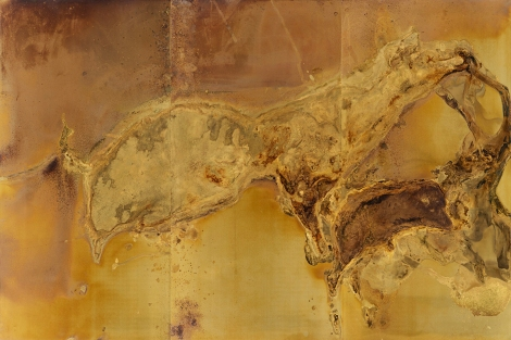GIVING BIRTH AND DYING STILL Messinki, kuolleen eläimen jäänteet Brass, original substances of a dead animal 200 x 300cm 2016