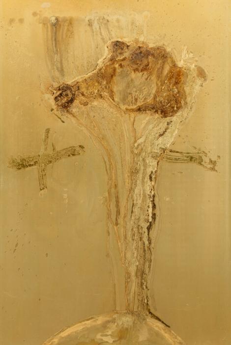 PLUS, MINUS Messinki, kuolleen eläimen jäänteet Brass, original substances of a dead animal 150 x 100cm 2016