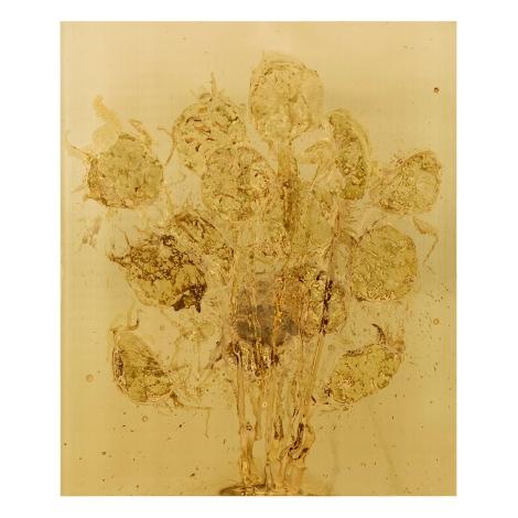 SUNFLOWERS Messinki, ihmisen istukan jäänteet Brass, original substances of human a placenta 120 x 100cm 2016